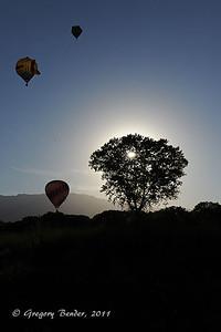 40th Albuquerque International Balloon Fiesta